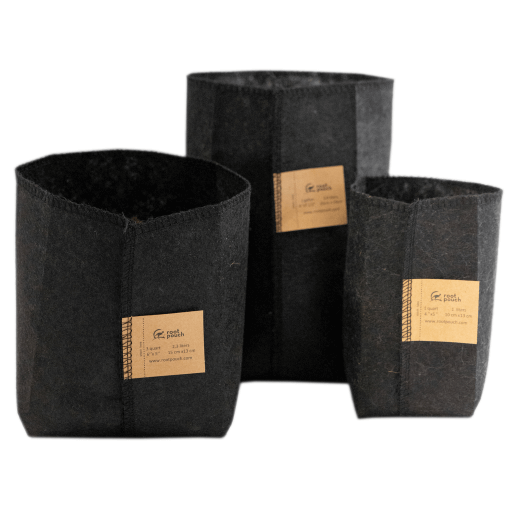 The worlds most prominent tree growers use Root Pouch containers